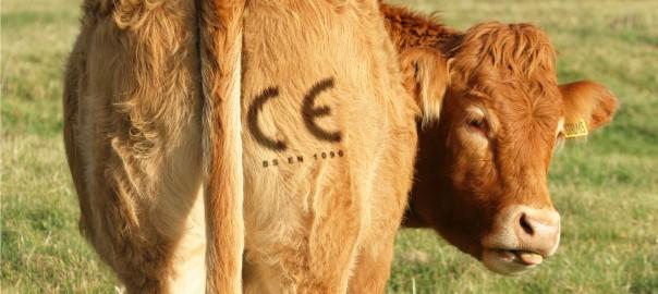 ce-marking-blog-l