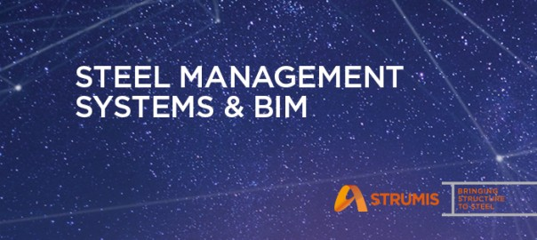 fi-steel-management-systems-bim
