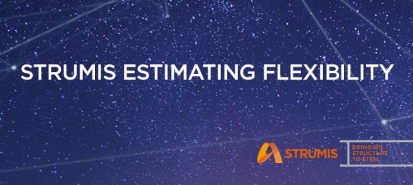 FI_-STRUMIS-Estimating-Flexibility
